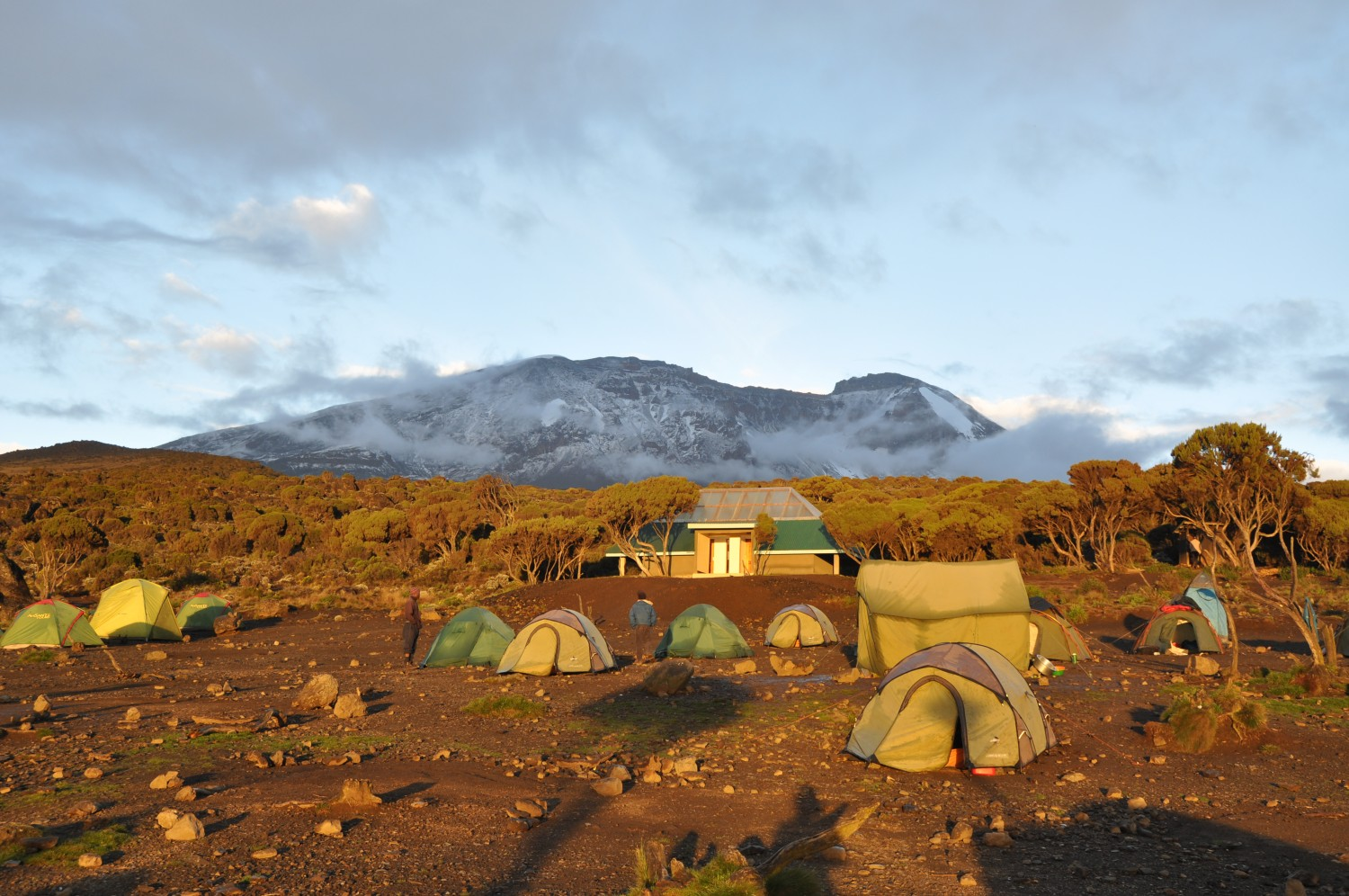 Shira camp and Kibo Peak